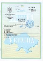 patent_55